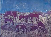 Anne Zahn, Artist, Assateague Ponies #11, artline