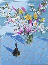 William C. Wright, Artist, Star Magnolia with Bell, artline